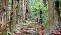 Viaje a Japón Legendario y camino Kumano