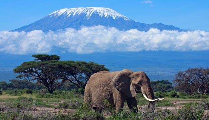 Viaje a Kenia a medida