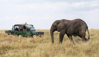 Viaje a Kenya y Tanzania. En camión. En busca de los 5 grandes 12 días