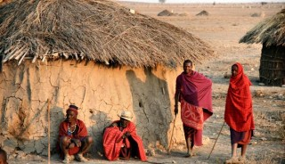 Viaje a Kenya, Tanzania y Zanzíbar. Navidad. Fin de año en Serengeti