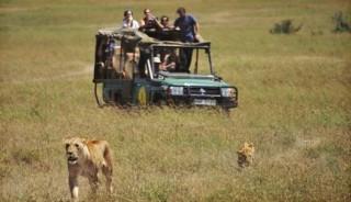 Viaje a Kenia, Tanzania y Zanzíbar. Experience Fin de Año