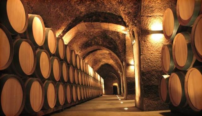 Viaje a la Rioja. Enoturismo