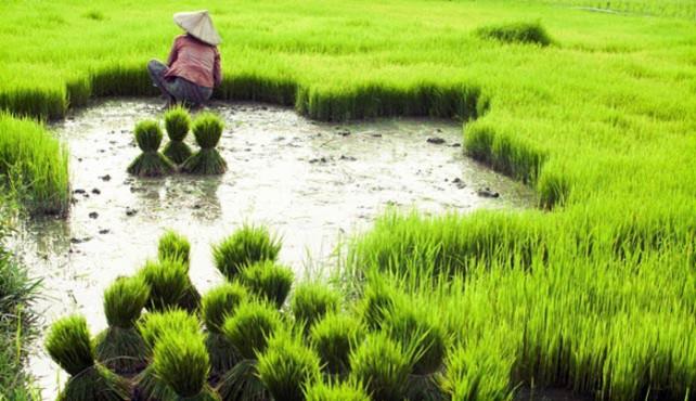 Viaje a Laos sostenible. A medida