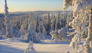 Viaje a Laponia Finlandesa en Fin de Año