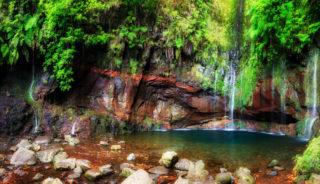 Viaje a Madeira. A medida. Estancia de 8 días en el paraíso natural