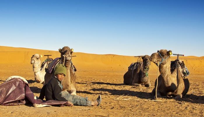 Viaje a Marruecos a medida