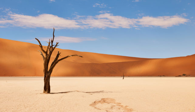 Viaje a Namibia. En camión