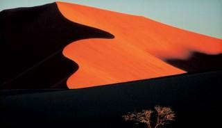 Viaje a Namibia. Singles. Esencias de Namibia