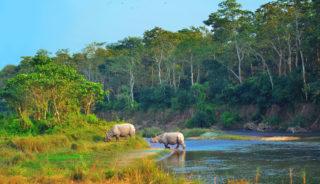 Viaje a Nepal. A Medida. El país de los Himalayas