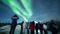Viaje a la Laponia Noruega responsable. Navidad. Vive en un fin de año una aventura inolvidable en plena naturaleza ártica: ballenas, fiordos y auroras boreales