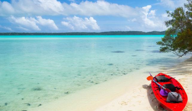 Viaje a Nueva Zelanda e Islas Cook. A medida