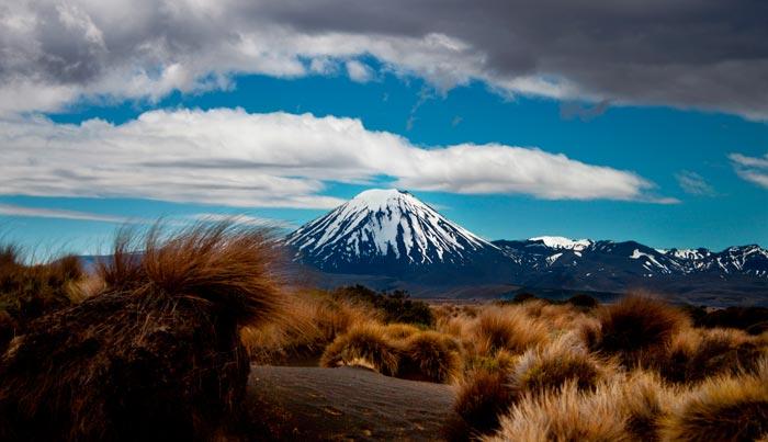 Viaje a Nueva Zelanda a medida