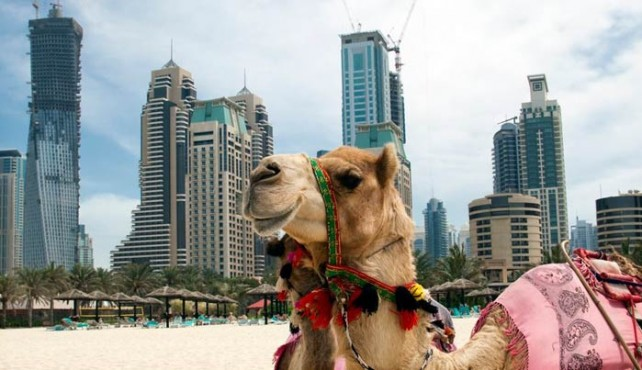 Viaje a Omán y Emiratos Árabes. Antigua Costa Pirata