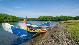 Viaje a Senegal y Gambia. En familia