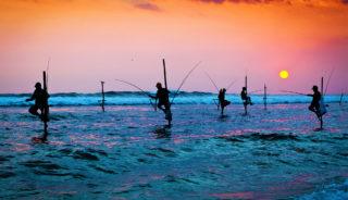 Viaje a Sri Lanka en grupo