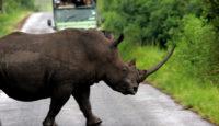 Viaje a Sudáfrica, Lesotho y Suaziland en camión