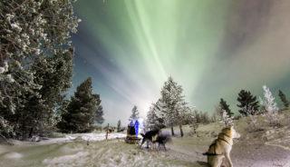 Viaje a Suecia. Navidad. Fin de año en la Laponia Sueca multiaventura invernal: auroras boreales, trineo de perros, motonieve y raquetas de nieve