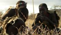 Viaje a Tanzania. Viaje hacia la cuna de la Humanidad