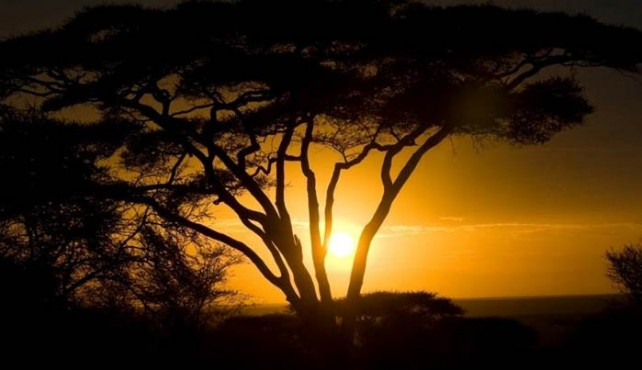 Viaje a Tanzania. Aventura en camión. Especial Fin de Año