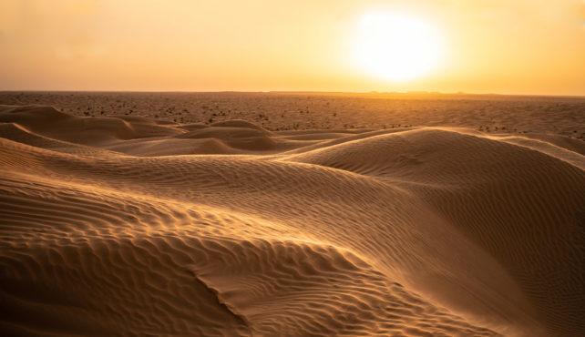 Viaje a Túnez. Grupo verano