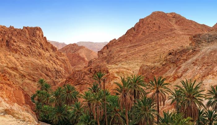 Viaje a Túnez a medida