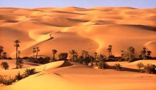 Viaje a Túnez singles