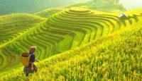 Viaje a Vietnam y Camboya. Grupo verano. Cultura, templos y minorías