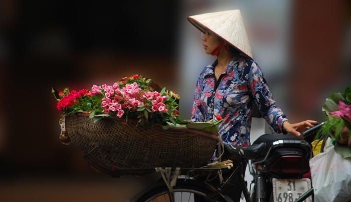 Viaje a Vietnam a medida
