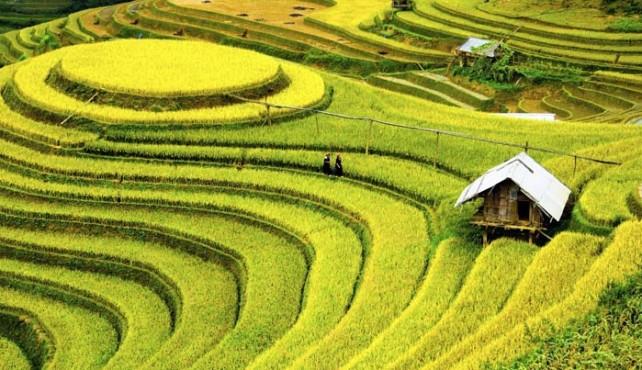 Viaje a Vietnam. En Gupo. Vietnam Inolvidable