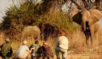 Viaje a Zambia. Fotográfico. Con Quim Dasquens