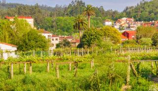 Viaje en bicicleta a Portugal y España. Autoguiado. El camino de la costa, de Oporto a Santiago