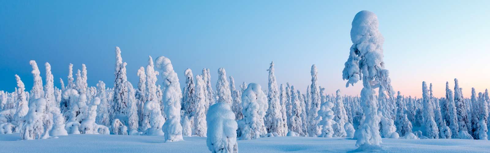 Viaje a Laponia. Puente de Diciembre