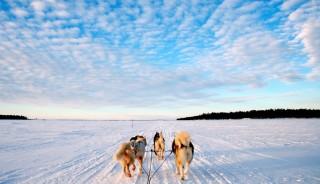 Viaje a Laponia Finlandesa