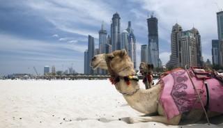 viaje a omán y emiratos árabes