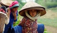 Viaje a Camboya. Voluntariado. Cooperación Hospitales en Camboya