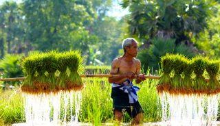 Viajes a Laos