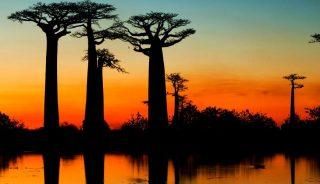 Viajes a Madagascar